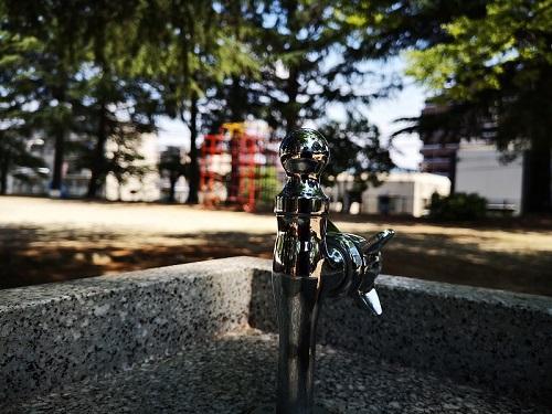 公園の蛇口
