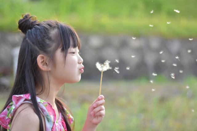 綿毛を飛ばす女の子