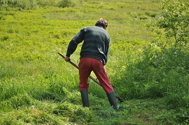 草刈りをしている男性