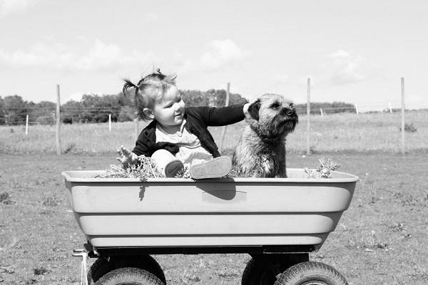 女の子と犬(モノクロ)