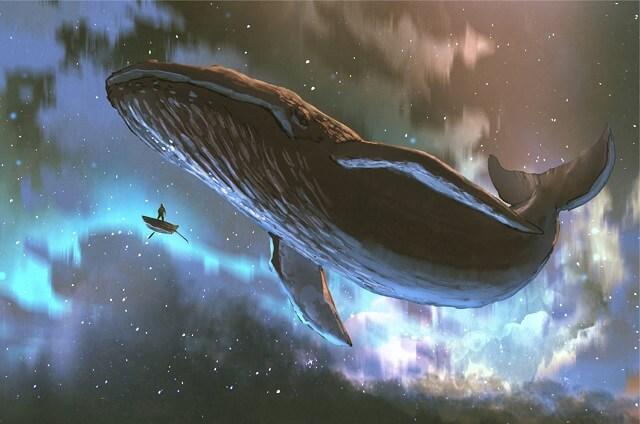 幻想的|海とクジラと星空と船