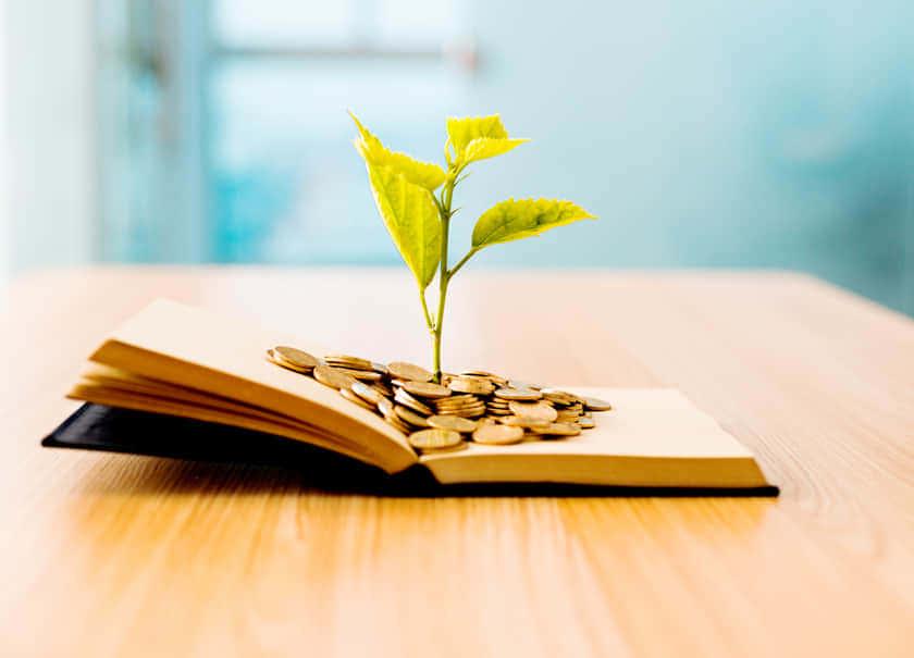 読書|本は金のなる木