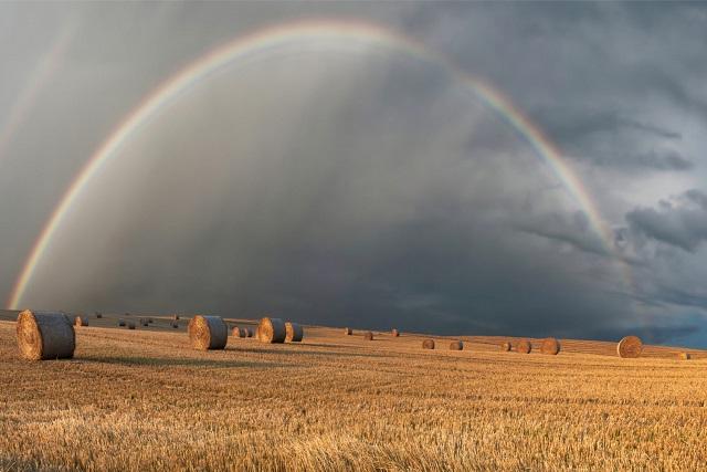 虹と農園とサイロ